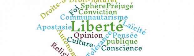 La liberté à l'épreuve de la réflexion