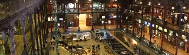 Paris, jour 4: Grande galerie de l'évolution/ Musée du Louvre